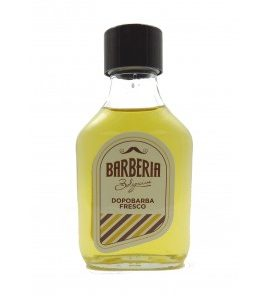 Barberia Bolognini Dopo Barba Fresco 100 ml