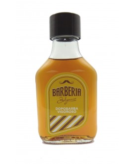 Barberia Bolognini Dopo Barba Vigoroso 100 ml